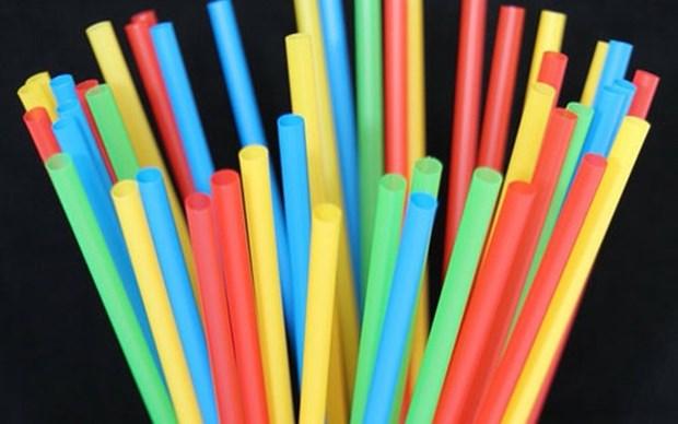 Llaman en Vietnam a reducir sorbetes plasticos para proteger el medio ambiente hinh anh 1