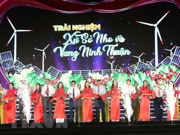 Festival de Uva y Vino promueve imagenes de provincia vietnamita de Ninh Thuan hinh anh 1