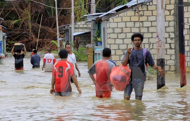 Reportan 10 muertos y ocho desaparecidos por inundaciones en Indonesia hinh anh 1