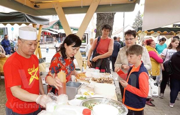 Acercan cultura vietnamita a amigos checos hinh anh 1