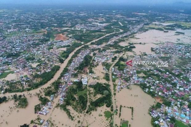 Inundaciones provocan 29 muertos en provincia indonesia de Bengkulu hinh anh 1