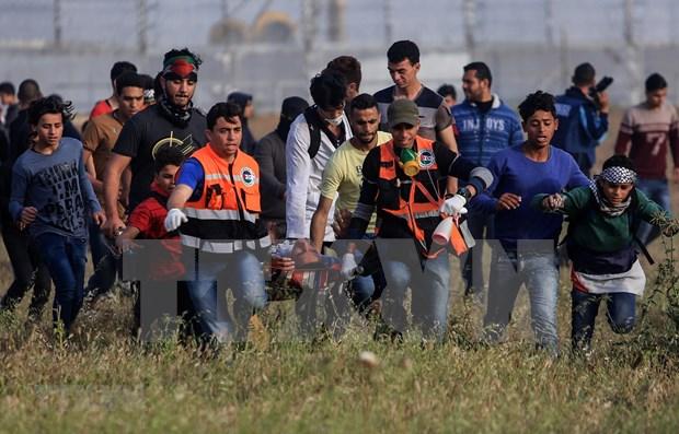 Llama Vietnam al restablecimiento del papel de la autoridad palestina en Gaza hinh anh 1