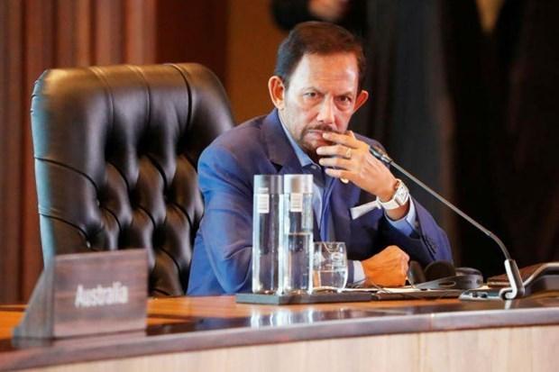Suspende Brunei la pena de muerte para homosexuales hinh anh 1