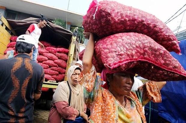 Indonesia promete asegurar suministro de alimentos en mes de Ramadan hinh anh 1