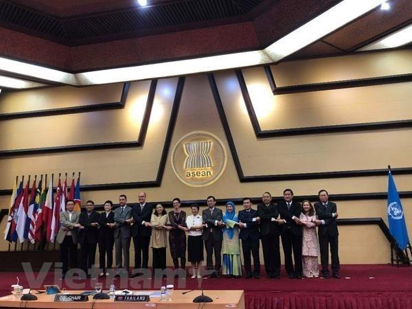 Revisan ASEAN y ONU plan de cooperacion hasta 2020 hinh anh 1