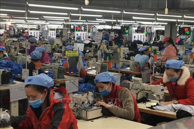 Promueven en Vietnam ecologizacion del sector textil hinh anh 1