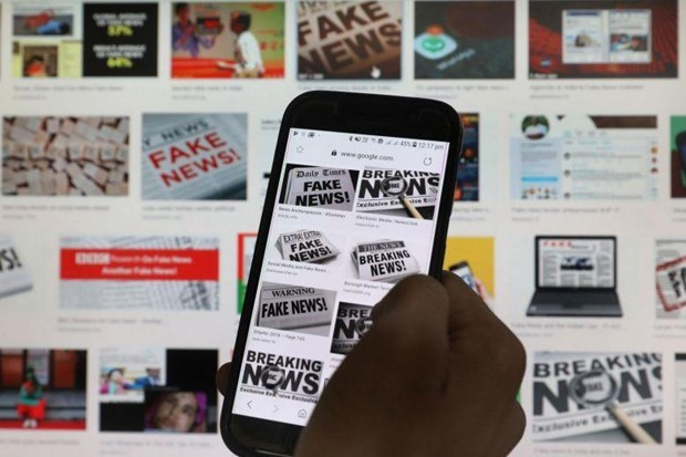Aprueba Parlamento de Singapur ley contra difusion de noticias falsas hinh anh 1