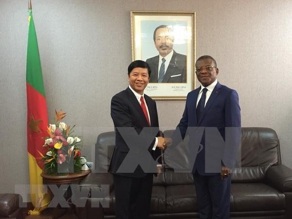 Proyecta Vietnam ampliar sus relaciones con la Republica de Camerun hinh anh 1