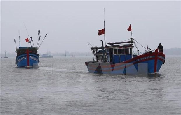 Pide Vietnam a Indonesia a respetar leyes internacionales sobre la pesca en el mar hinh anh 1