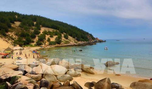 Ciudad vietnamita de Quy Nhon, nuevo destino para vacaciones de playa hinh anh 1