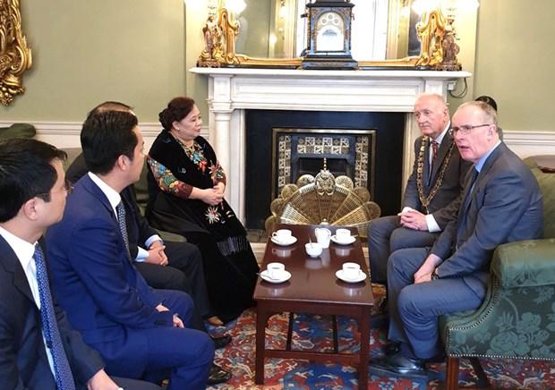 Promueve Hanoi cooperacion con Irlanda y Reino Unido hinh anh 3