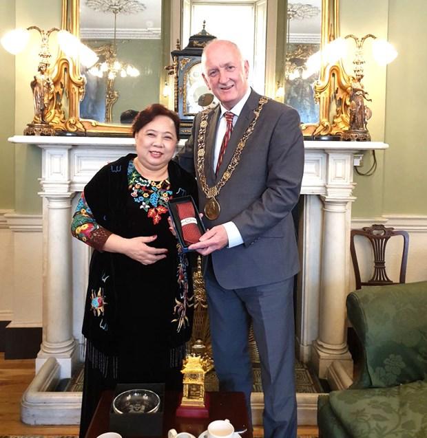Promueve Hanoi cooperacion con Irlanda y Reino Unido hinh anh 2