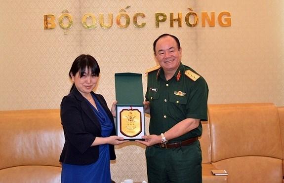Promueven Vietnam y Japon cooperacion en operaciones de paz hinh anh 1