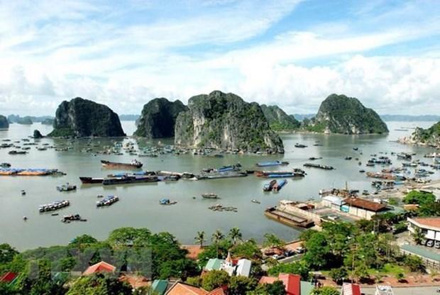 Abren en Vietnam servicio para contemplar la bahia de Ha Long desde helicopteros hinh anh 1