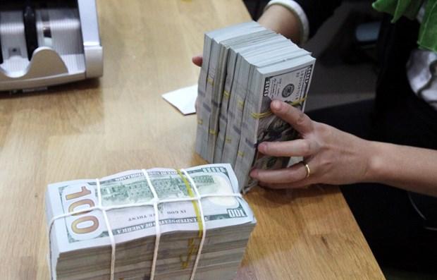 Complementa Vietnam regulaciones sobre uso de divisas en el territorio nacional hinh anh 1