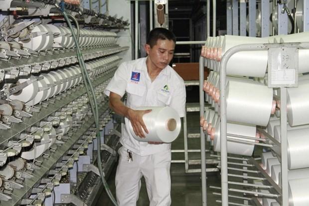 Publicaran Libro Blanco sobre Empresas de Vietnam 2019 hinh anh 1