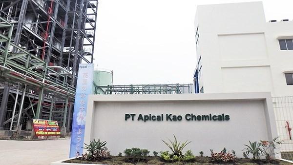Construye empresa japonesa nueva fabrica de acidos grasos en Indonesia hinh anh 1