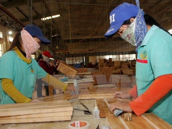 Financia el Banco Asiatico de Desarrollo a empresas lideradas por mujeres en el Pacifico hinh anh 1