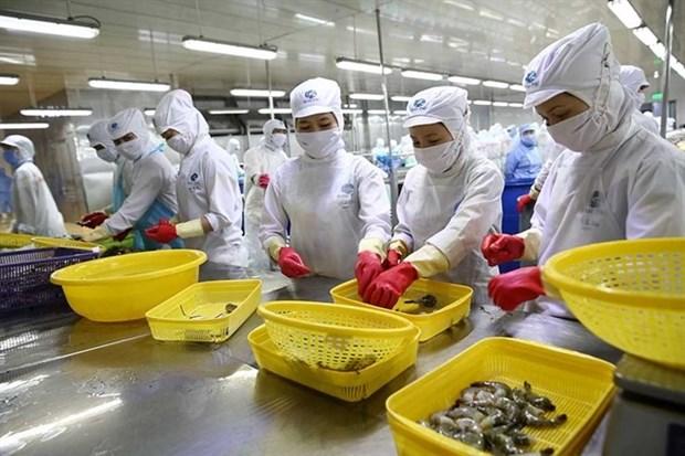 Invierte compania japonesa mas de 150 millones de dolares en empresa vietnamita de productos acuicolas hinh anh 1