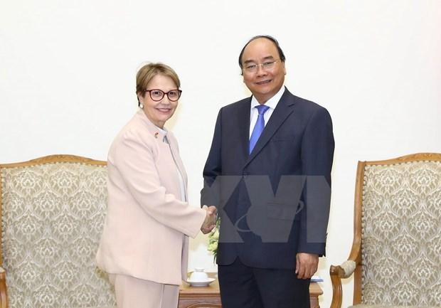 Primer ministro de Vietnam recibe a ministra de Agricultura de Brasil hinh anh 1