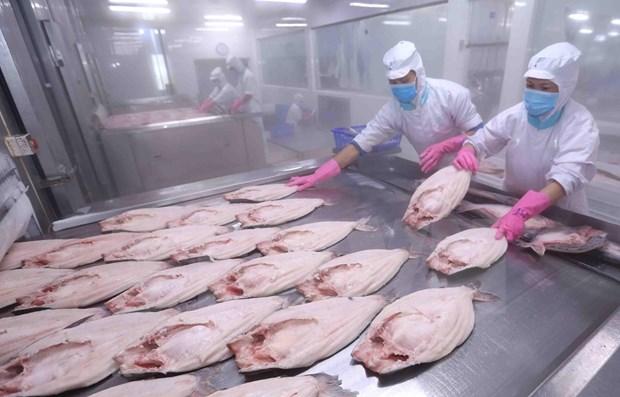 Preven en Vietnam crecimiento del ocho por ciento en exportacion de productos acuicolas hinh anh 1