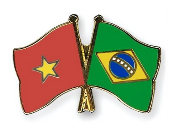 Buscan ampliar nexos comerciales entre Vietnam y Brasil hinh anh 1