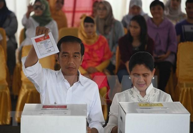 Anuncian reeleccion de Joko Widodo como presidente de Indonesia hinh anh 1