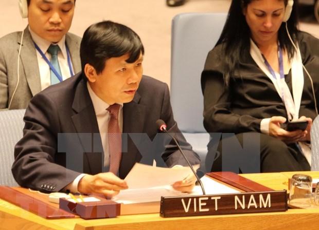 Reitera Vietnam compromiso de contribuir a proteccion de civiles en conflictos armados hinh anh 1