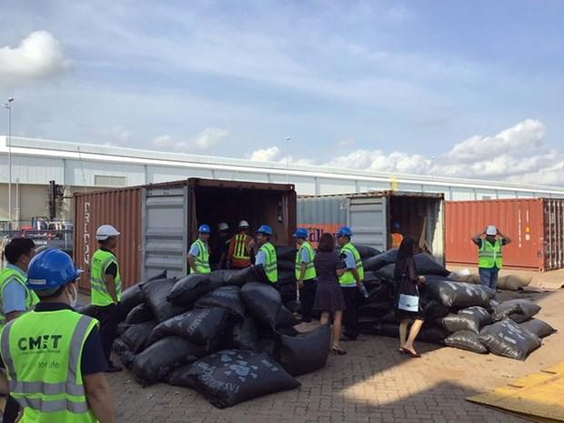 Incauta aduana vietnamita mas de cinco toneladas de escamas de pangolin hinh anh 1