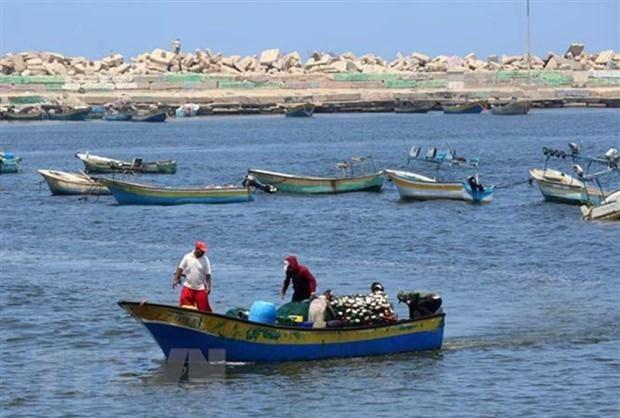 Mueren ocho pescadores en Myanmar al hundirse sus barcos hinh anh 1