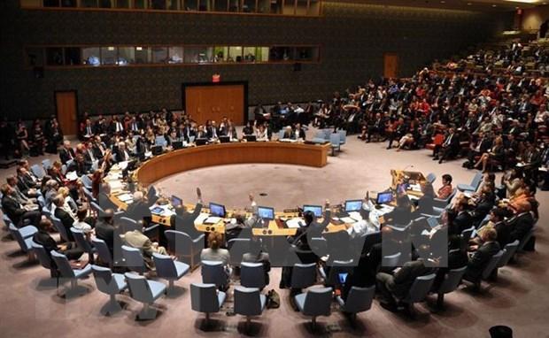 Participacion de Vietnam en la ONU eleva su posicion en la comunidad internacional hinh anh 1