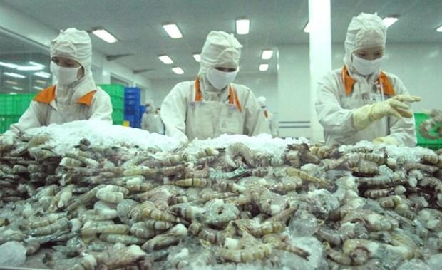 Colaboran provincias vietnamita y japonesa para construir marca comercial de camaron limpio hinh anh 1