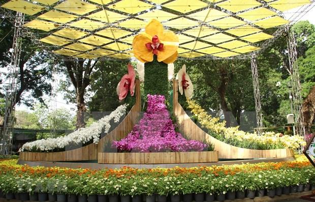 Coloridas orquideas embellecen la ciudad vietnamita de Nha Trang hinh anh 1