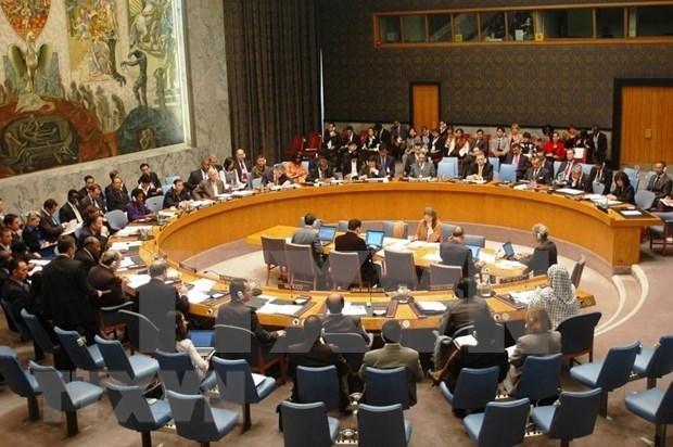 Apoya periodista estadounidense eleccion de Vietnam para el Consejo de Seguridad de la ONU hinh anh 1