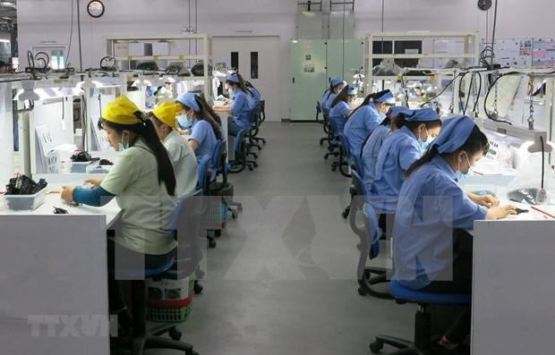 Pronostican que crecimiento economico de Vietnam oscilara entre 6,5 y 6,8 por ciento en 2019 hinh anh 1