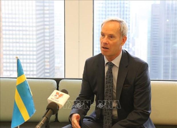 Recibe Vietnam apoyo sueco para su candidatura a miembro no permanente del Consejo de Seguridad de ONU hinh anh 1