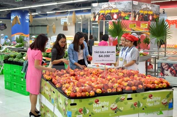 Instan a mejorar conectividad entre los minoristas en Vietnam hinh anh 1