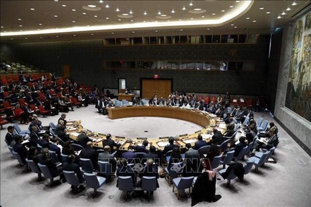 Apoya embajador indonesio eleccion de Vietnam como miembro del Consejo de Seguridad de la ONU hinh anh 1