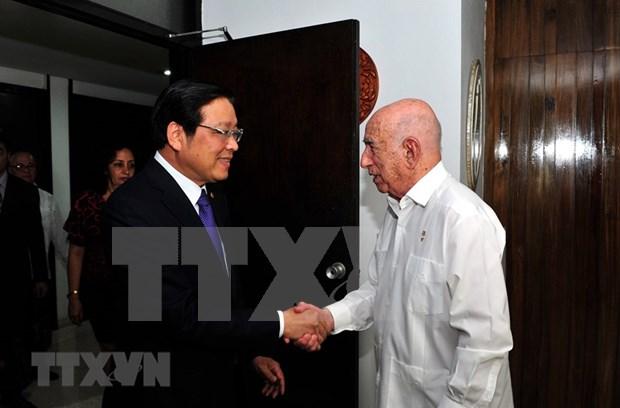 Realiza delegacion partidista de Vietnam visita a Cuba hinh anh 1
