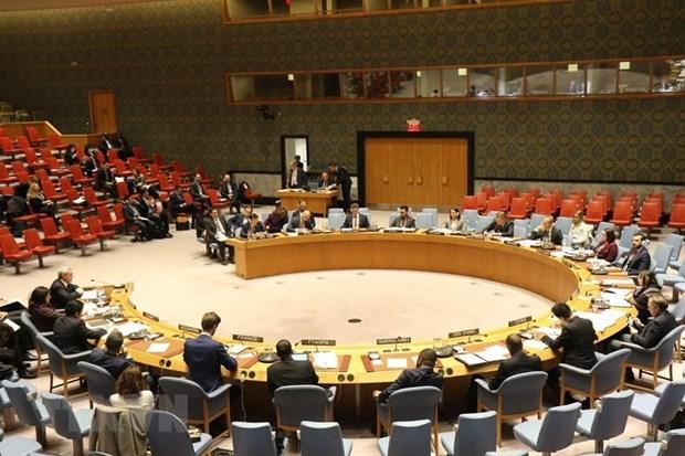Confia exvicecanciller en eleccion de Vietnam como miembro de Consejo de Seguridad de la ONU hinh anh 1