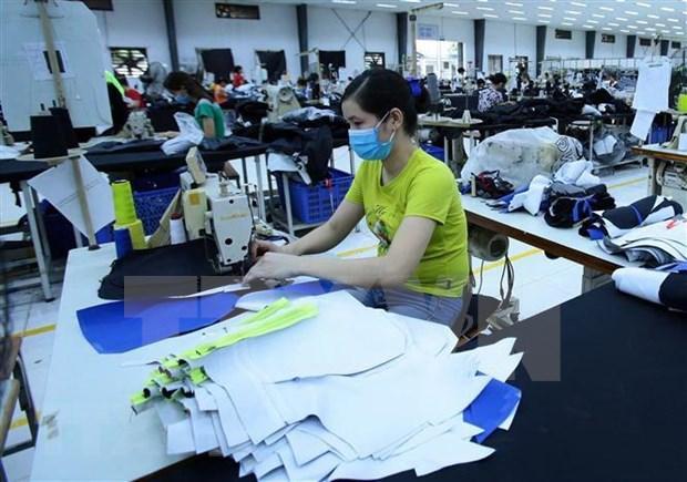 Afecta al sector textil de Vietnam escasez de materiales nacionales hinh anh 1