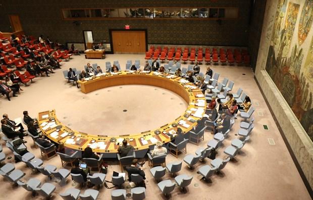 Espera embajador senegales atencion de Vietnam a asuntos relacionados con Africa hinh anh 1