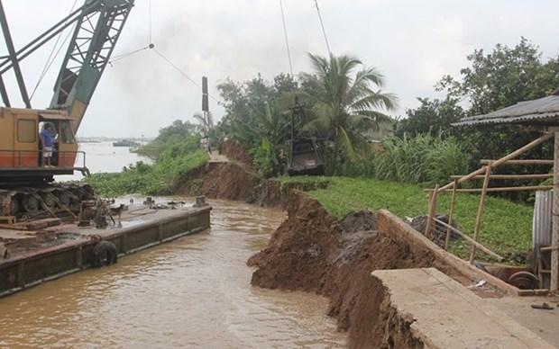 Provincia vietnamita de Ben Tre responde al cambio climatico hinh anh 1