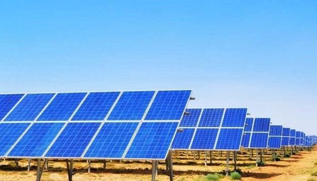 Opera empresa de la India planta fotovoltaica en Vietnam hinh anh 1