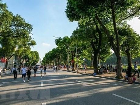 Organizan en Vietnam actividades por el Dia Mundial de Medio Ambiente hinh anh 1