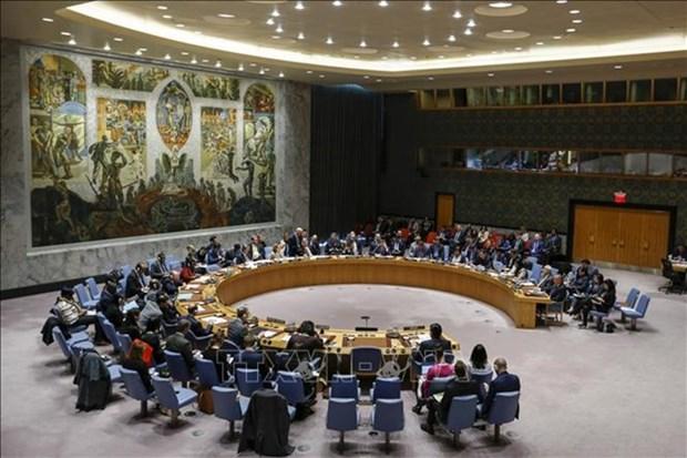 Expresa periodista egipcio confianza en eleccion de Vietnam al Consejo de Seguridad de la ONU hinh anh 1
