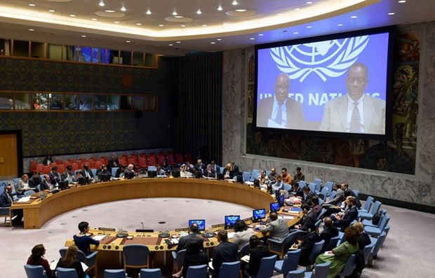 Vietnam elegido miembro no permanente del Consejo de Seguridad de ONU hinh anh 1