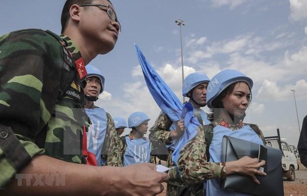 Ratifica ONU respaldo a Vietnam, miembro no permanente del Consejo de Seguridad hinh anh 1
