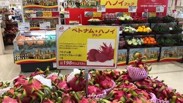 Fortalecen presencia de productos vietnamitas en Japon hinh anh 1
