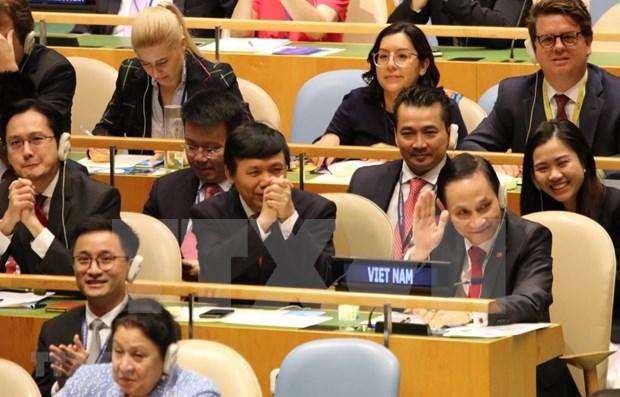Prensa india alaba eleccion de Vietnam al Consejo de Seguridad de la ONU hinh anh 1